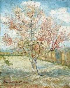 vincent-van-gogh-paintings-from-arles-7
